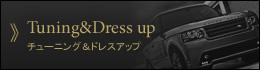 チューニング&ドレスアップ